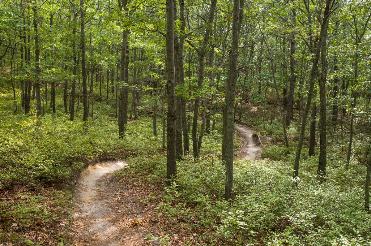 TrailsLikeThese_JPBevins-007807