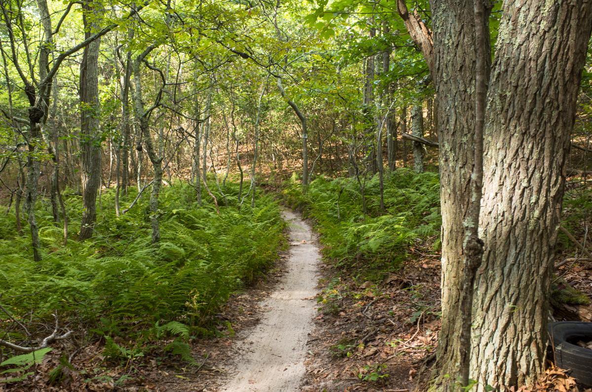 TrailsLikeThese_JPBevins-007816