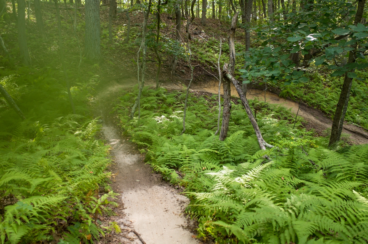TrailsLikeThese_JPBevins-007817