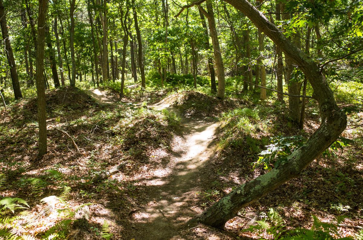 TrailsLikeThese_JPBevins-007829