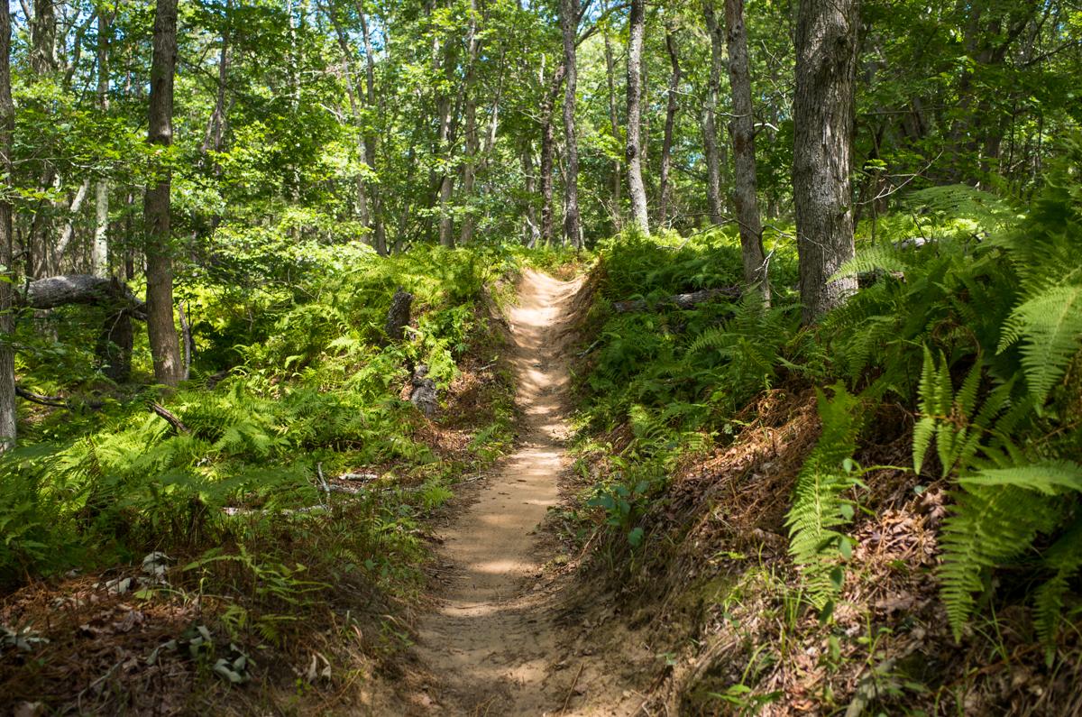 TrailsLikeThese_JPBevins-007832