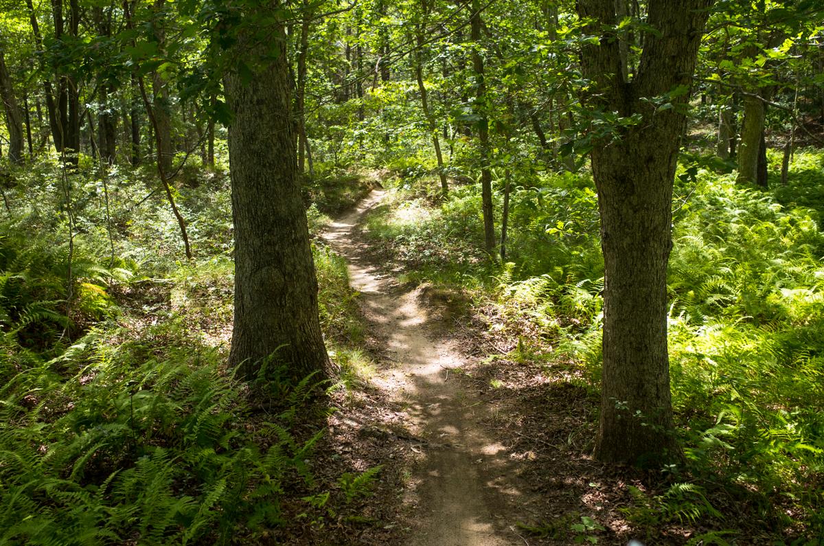 TrailsLikeThese_JPBevins-007834
