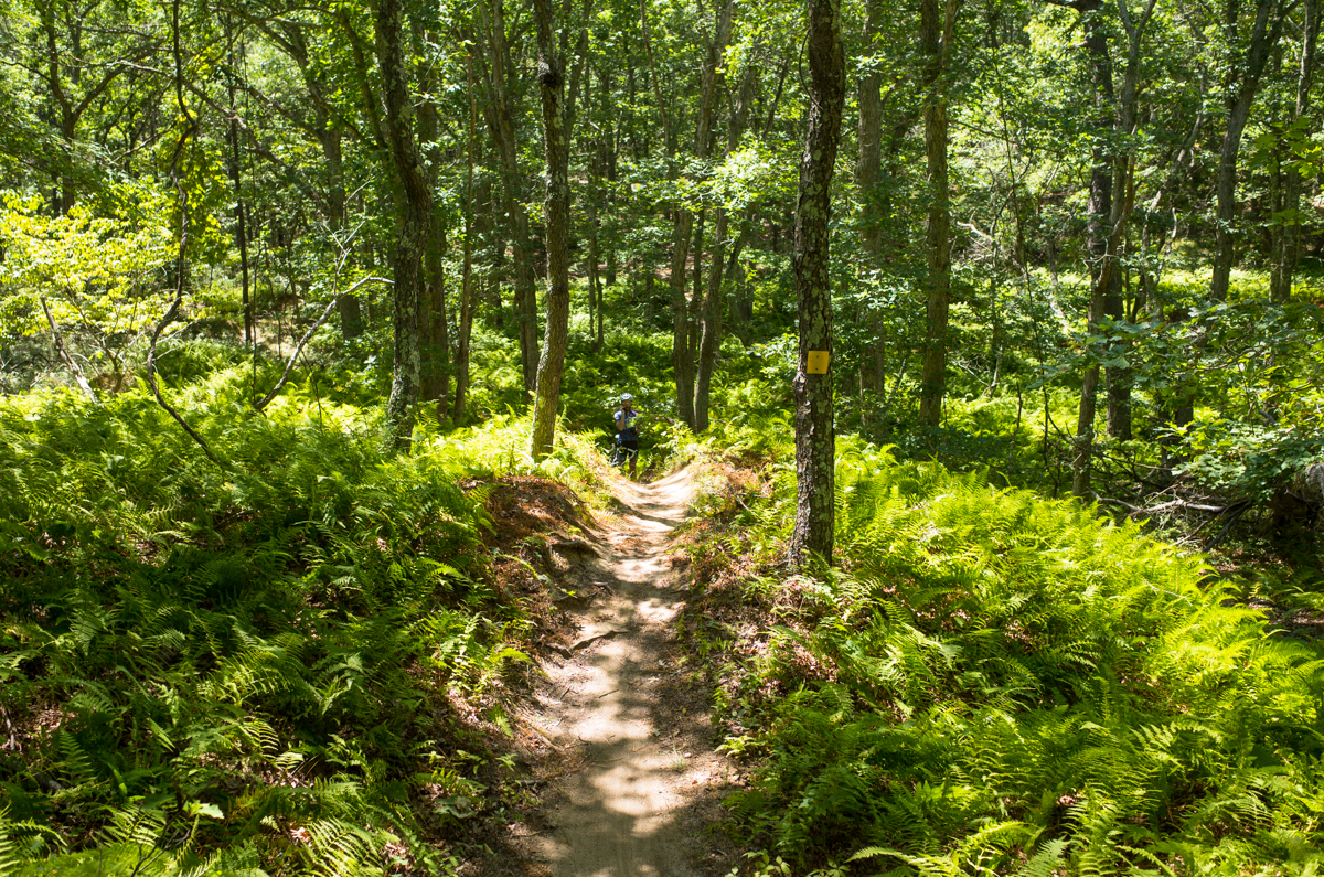 TrailsLikeThese_JPBevins-007840
