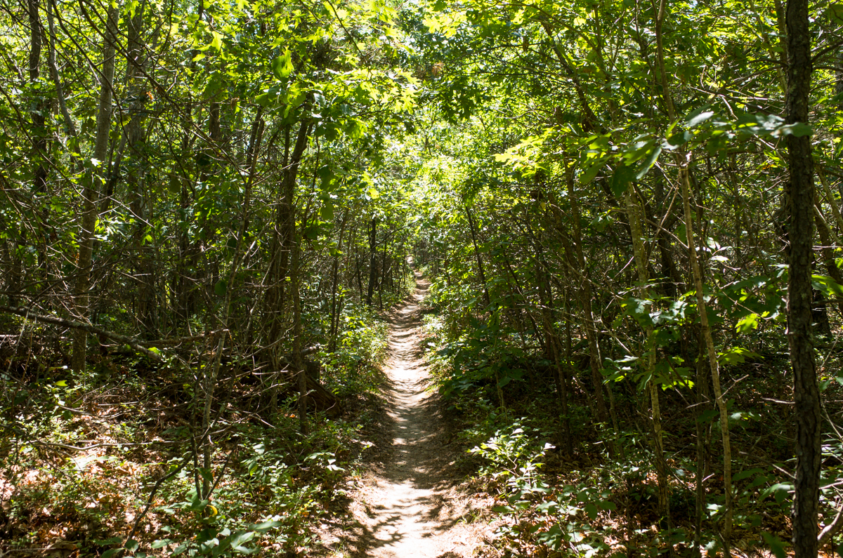 TrailsLikeThese_JPBevins-007845