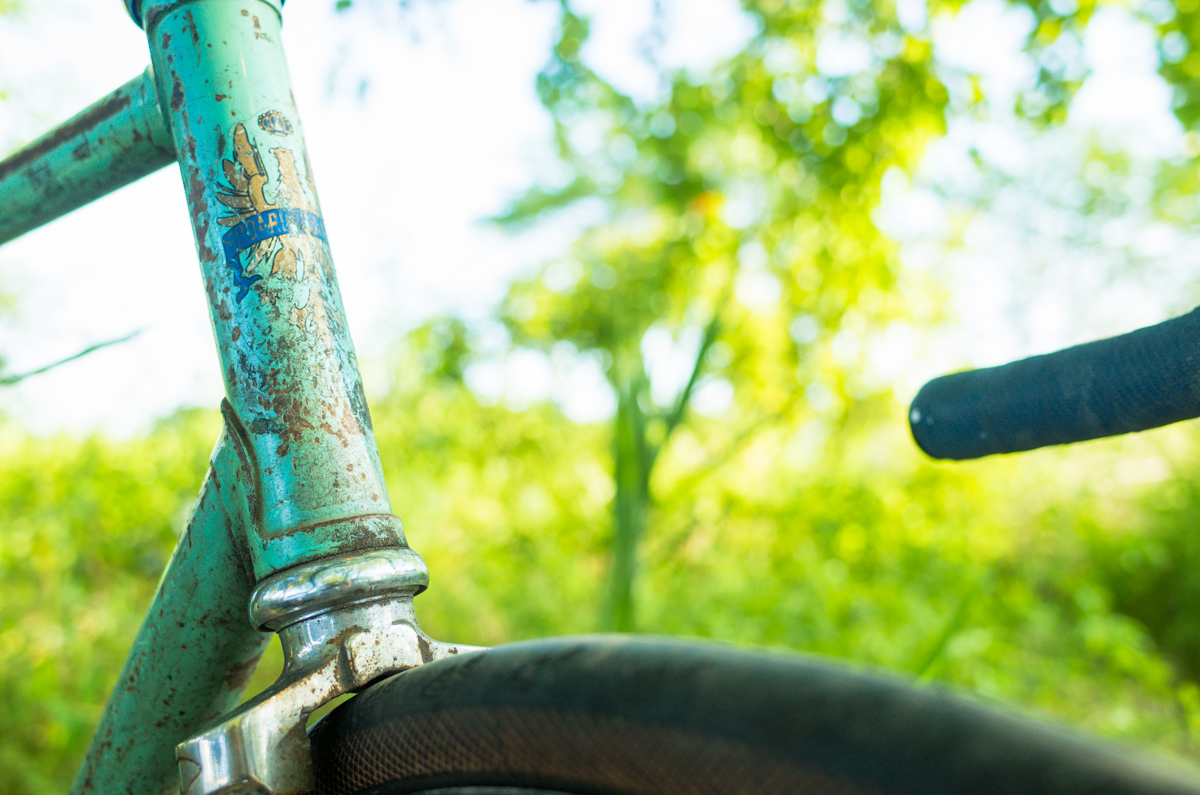 Timecycle_Bianchi-006835