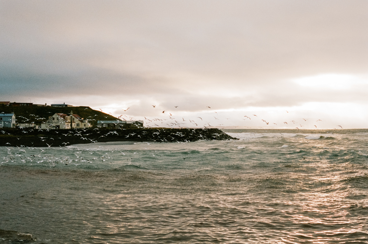 Kendra_Connally_Iceland_Touring-11