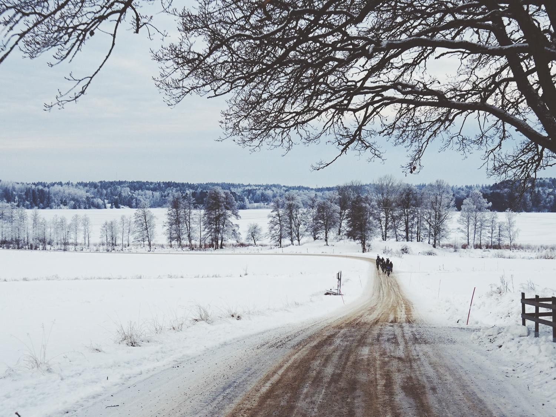 RoadsLikeThese_HagenBender-653