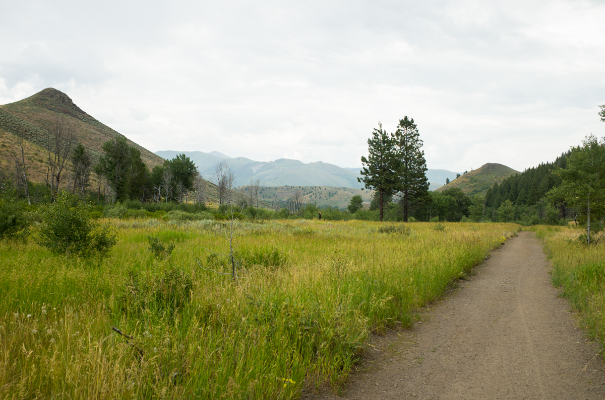 Idaho-007412