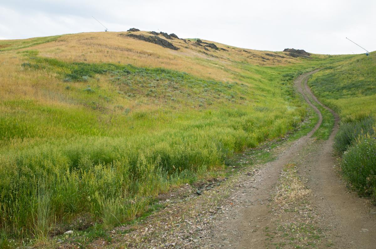 Idaho-007427