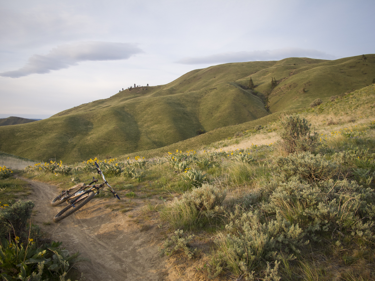 sage_hills