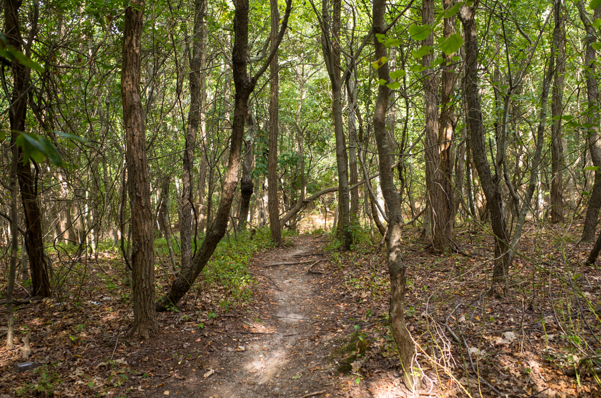 TrailsLikeThese_JPBevins-007811