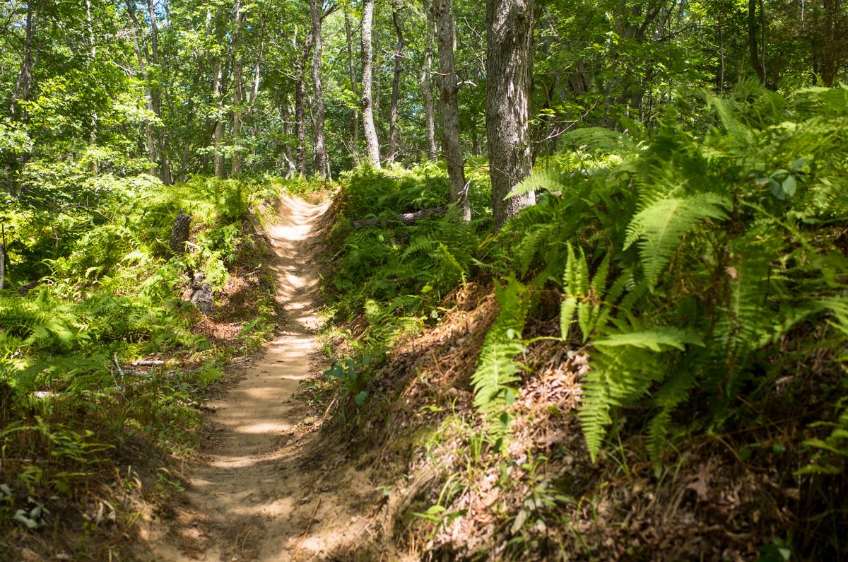 TrailsLikeThese_JPBevins-007833