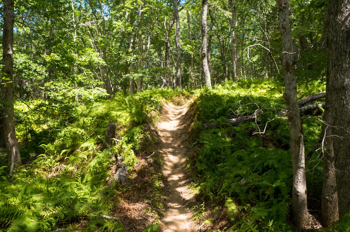 TrailsLikeThese_JPBevins-007835