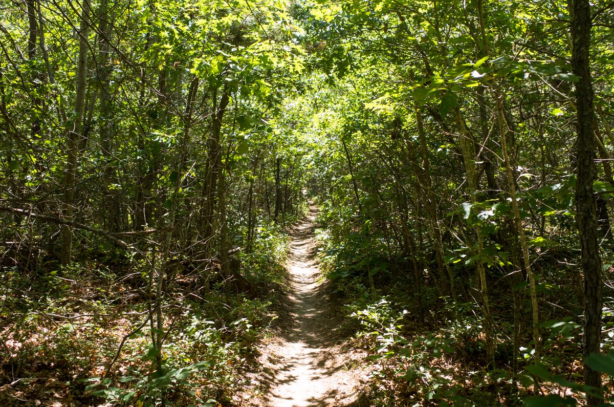 TrailsLikeThese_JPBevins-007849