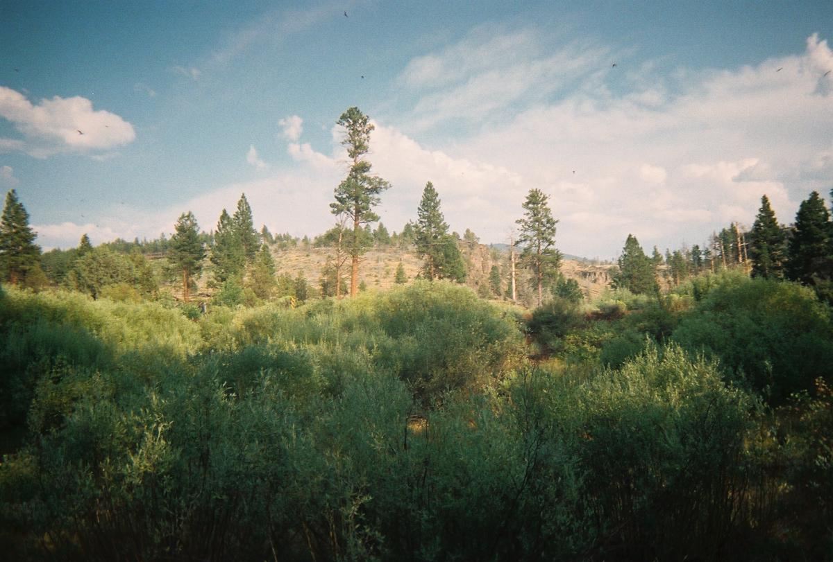 AshleyMagnus_OregonBrokeback_pt2--23