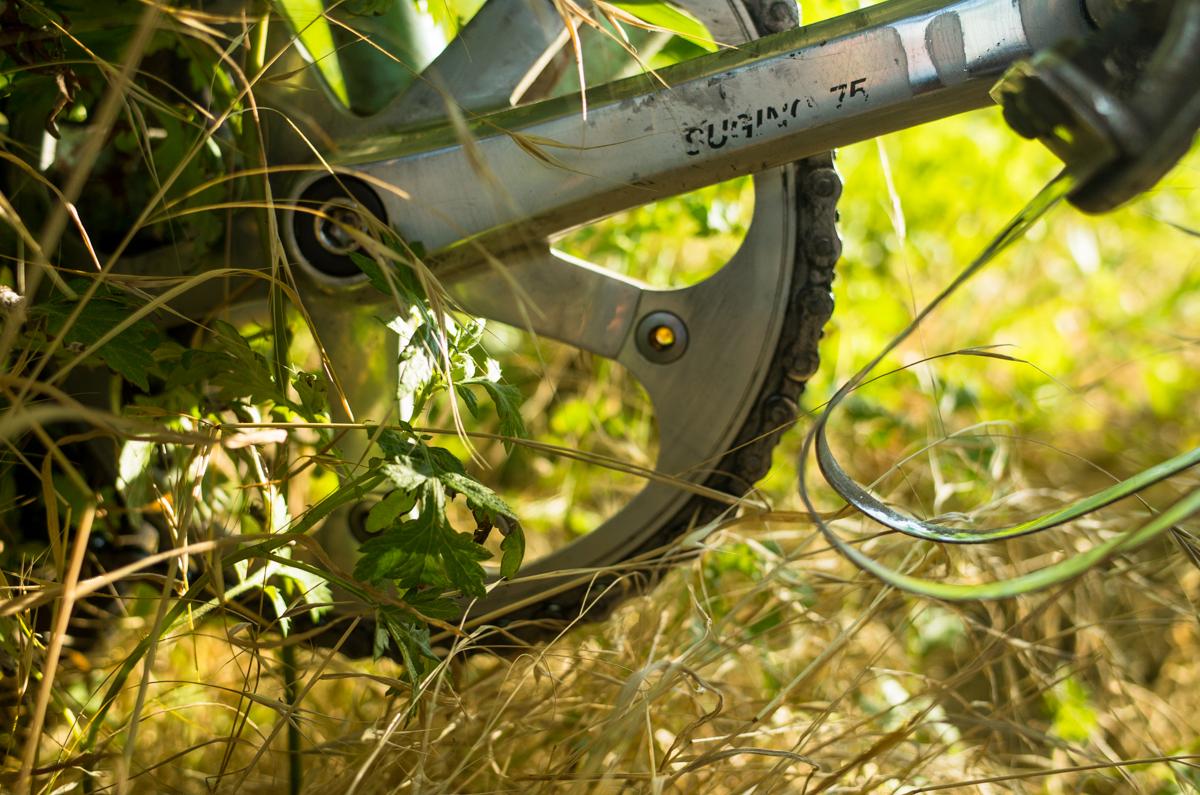 Timecycle_Bianchi-006831