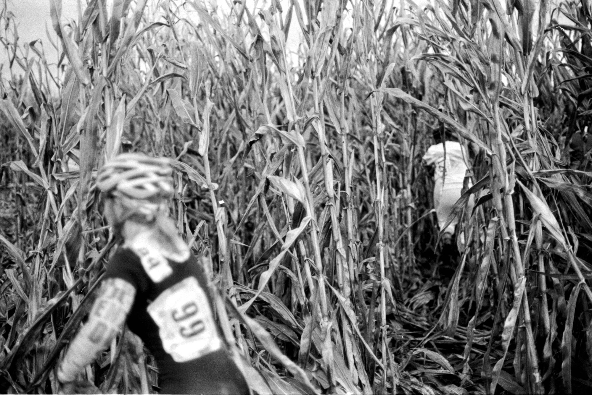 the-great-bike-hunt-damian-riehl-fauxriehl