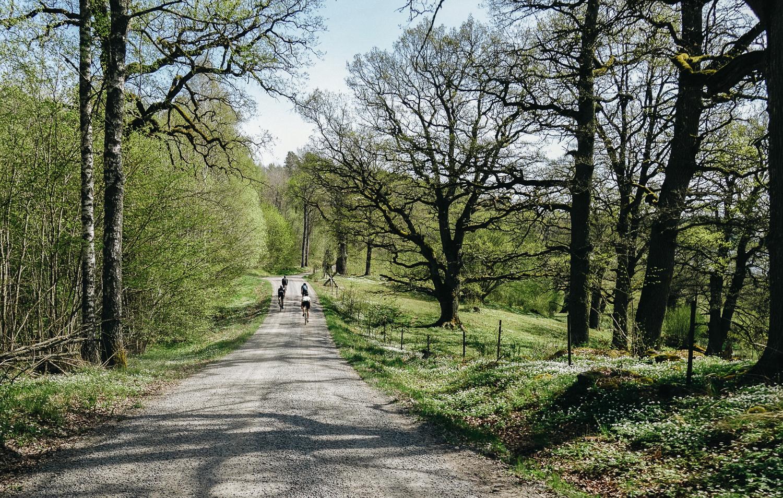 RoadsLikeThese_HagenBender-860