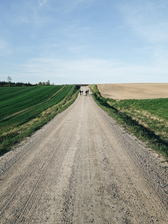RoadsLikeThese_HagenBender-864
